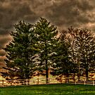 Storm Approaching At Sunset, taken at the Eisenhower Farm, Gettysburg PA by Jane Neill-Hancock