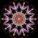 Purple Star Kaleidoscope 01 by fantasytripp