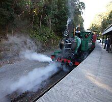 Beautiful Tasmania - letting off steam by georgieboy98
