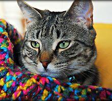 My Colorful Girl by jodi payne