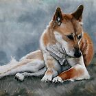 Cinnamon YellowDog by Beth Haywood
