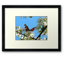 High on life! Framed Print