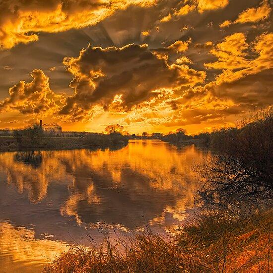 Good Morning Sunshine by Martin Crush