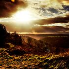 Moorland Sunset by Will Corder | Photography