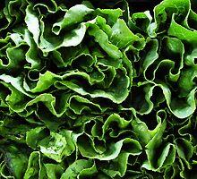 Spinach! by Gretchen Dunham