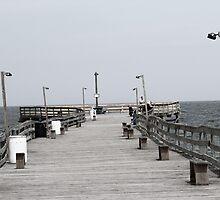 pier. by Max Franz Jr.