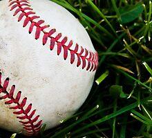 Baseball  by Kel-Z