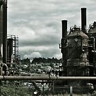 Gas Works Park I by Darnita L Howard