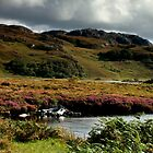 Loch Bad ah Sgalaig, Scottish Highlands by Jim Round