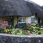 Thatched Cottage by Patrick Ronan