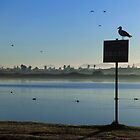 Sunrise at Lakeside by Peter Edwards