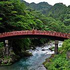 Sacred Bridge in Nikko, Japan by avresa