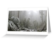 A Forest of Ash and snow  Greeting Card