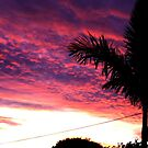 Sun Set from home 2 by LESLEY B