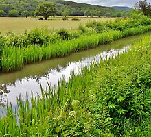 Glynneath Canal by Paula J James