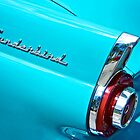 Classic Thunderbird by fernblacker