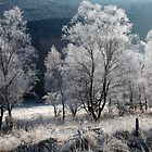 Early morning frost in Gleann Mor by Martin Lawrence