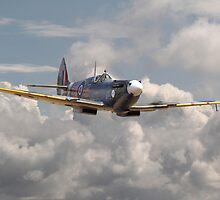 Spitfire - 145 Sqdn RAF by Pat Speirs