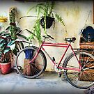 The Old Bike by Maria  Gonzalez