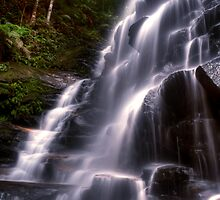 Sylvia Falls - Blue Mountains NSW Australia by Brad Woodman