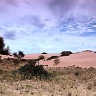 Dunes, Late Afternoon at Mungo  by Carole-Anne