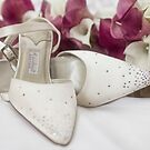 The Wedding Shoes by Lynne Morris