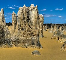 Pinnacles - Nambung National Park - WA by Frank Moroni