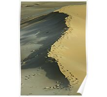 Footprints on a dune Poster