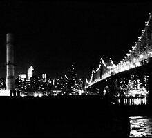 59th St Bridge & Power Plant by ARPunk