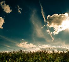 Dramatic Sky by schwarz
