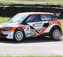 Guttorm Lindefjell - Skoda Fabia WRC by Matt Dean