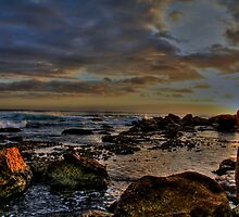 Sunrise Fairy Bower-Manly by Andrew  MCKENZIE