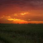Prairie Sunset by Bruce Guenter
