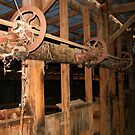 The Old Shearing Shed by Saraswati-she
