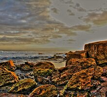 Winki Pop Sunrise  by Andrew  MCKENZIE
