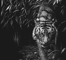 Stealth - sumatran tiger by Leigh Rust