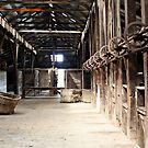 Historic Perricoota Woolshed NSW by Julie Sleeman