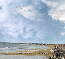 beach during a rain storm by morrbyte