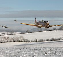 Spitfire - Follow my Leader by Pat Speirs