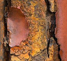 Autumn Rust by M. van Oostrum