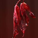 I Dream In Red . . . by Renee Blake