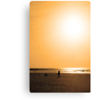 child and dog walking in golden sun shower Canvas Print