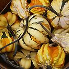 Gourds In A basket by WildestArt