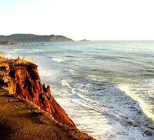 San Francisco, a cliff, an ocean, a city! by Melissa R.C.