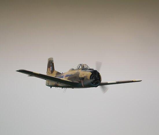 Fennec in Flight by Nigel Bangert