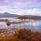 Colorful World of Rannoch Moor. Scotland by JennyRainbow