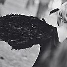Blackbird XIII by Trish Woodford