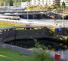 Hiram M. Chittenden Locks by Loisb