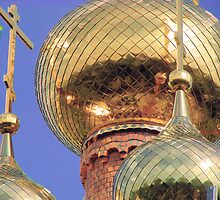 domes of temple of Saint Mitrofan by VallaV