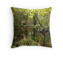 White River Landscape 6749 Throw Pillow